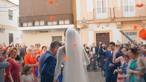 video-de-boda-bodegas-fundador-pedro-domecq-jerez-cadiz-34