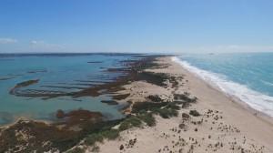 playa-de-camposoto-san-fernando-cadiz26
