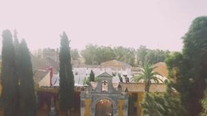 video-de-boda-en-el-castillo-de-la-monclova-fuentes-de-andalucia-sevilla-24