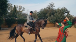 video-de-boda-en-el-castillo-de-la-monclova-fuentes-de-andalucia-sevilla-61