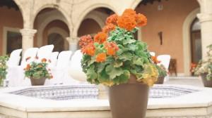 video-de-boda-en-el-castillo-de-luna-y-los-caimanes-rota-4