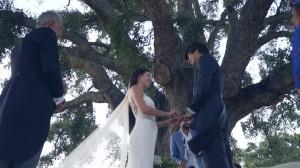 foto-video-de-boda-en-hacienda-montenmedio-vejer-cadiz-35