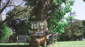 video-de-boda-en-el-recreo-de-cadenas-de-la-real-escuela-ecuestre-de-jerez-8
